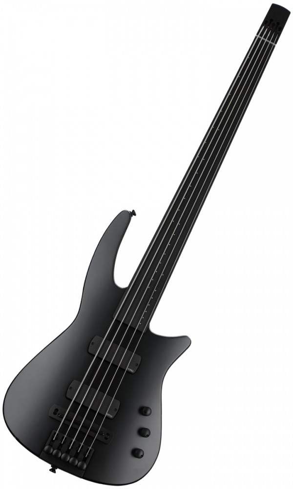 NS Design NXT5a Radius Fretless