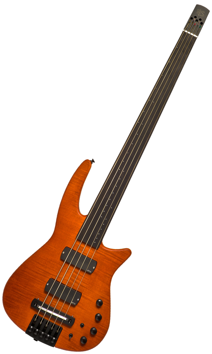 NS Design CR5 Radius Fretless